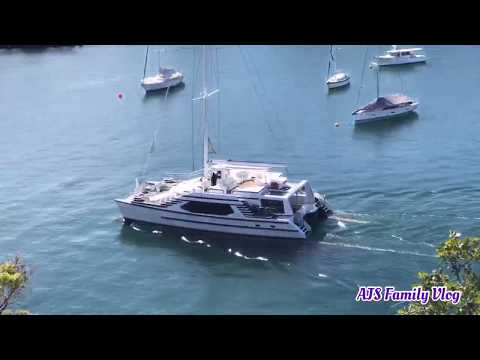 A VIEW OF NORTH SYDNEY FROM THE TOP | SYDNEY AUSTRALIA  | NORTH SYDNEY SHORT VIDEO