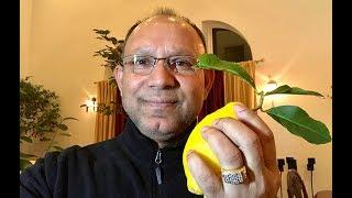 আমেরিকাতে গাছের লেবু দিয়ে ইলিশ পোলাও    How to cook Hilsha polaw