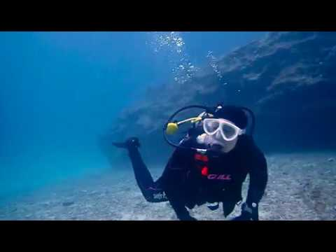 January Highlights - Gopher Diving Okinawa