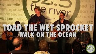 Toad the Wet Sprocket perform