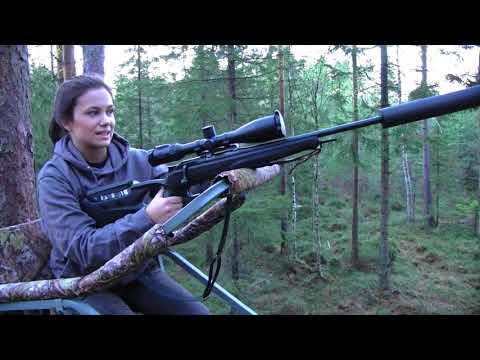 Episode 1 | Wildboar hunt | villsvinjakt | hoghunting