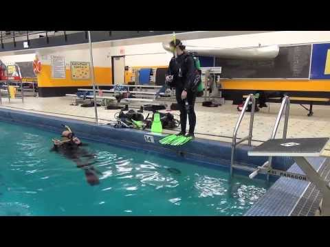 Jesse Gets Certified | Jesse Gets Certified: Pool Training