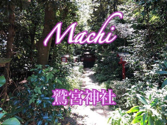 鷲宮神社/Machi/鷲宮神社へ参拝に行って参りました!