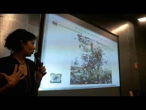 Presentación Africa Mir- Creación del arte en Colonial Space Wars - Desafío Wargames 2013