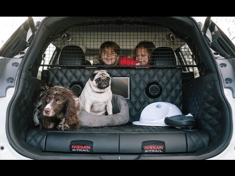 nissan x trail 4dogs concept the ultimate suv for dog. Black Bedroom Furniture Sets. Home Design Ideas