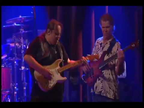Walter Trout Performs