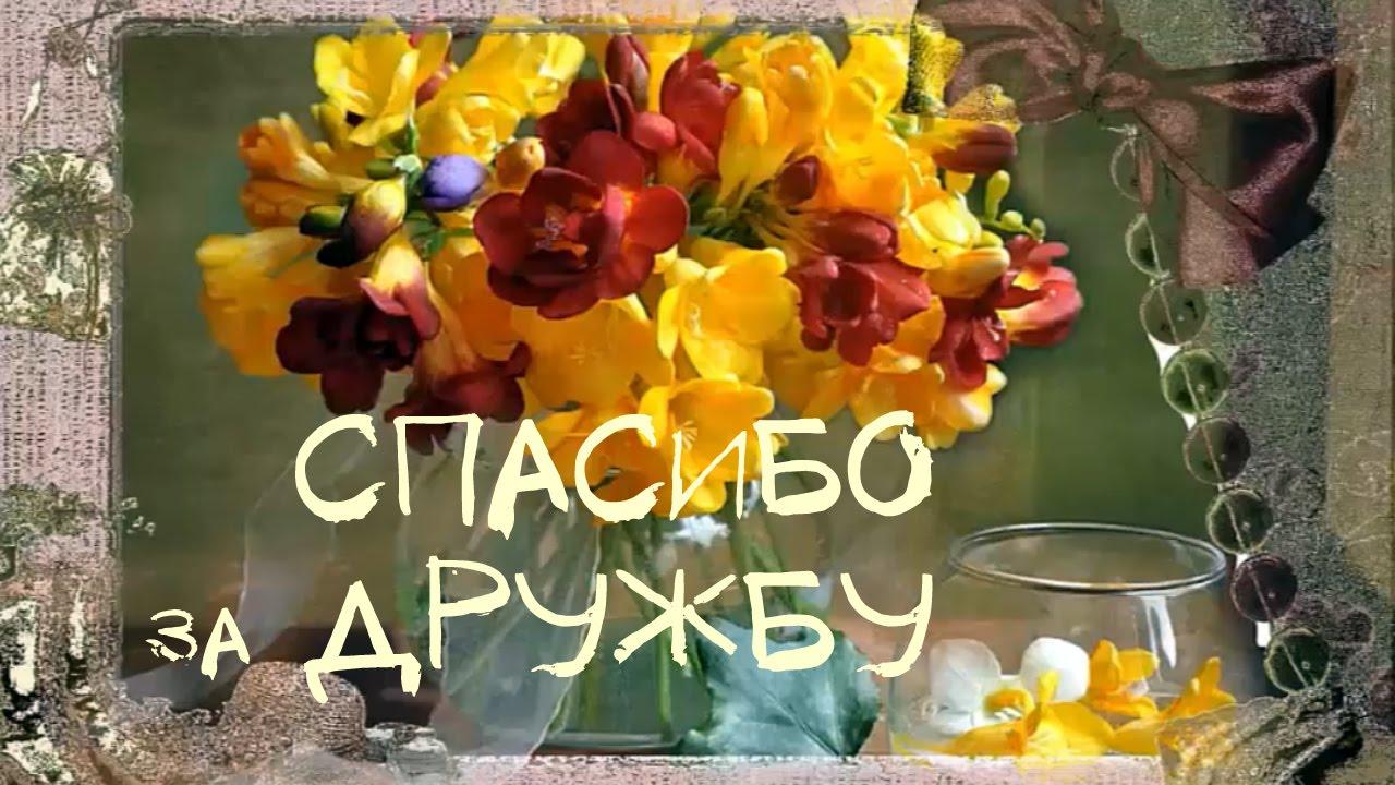 спасибо вам друзья фото картинки