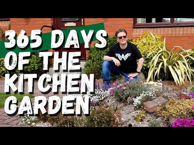The Kitchen Garden : 365 days later 2020 in review