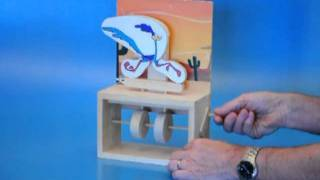 Griffith University Design And Technology Automata Student Projects