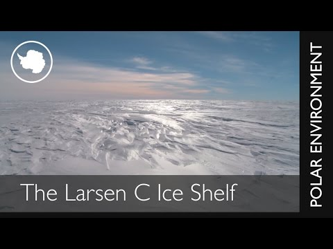 The Larsen C Ice Shelf is thinning from above and below say scientists