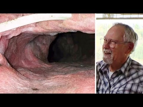 Strange Noises Are Coming From The Attic  Bob Checks, And Finds A Nightmare House Guest