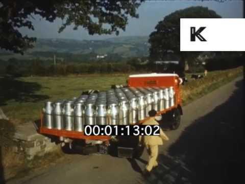 1950s, 1960s UK Dairy Farm, Milk Collection