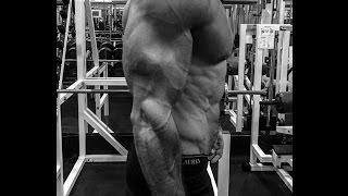 Musculation : prise de masse pour les bras (biceps/triceps) en superset.