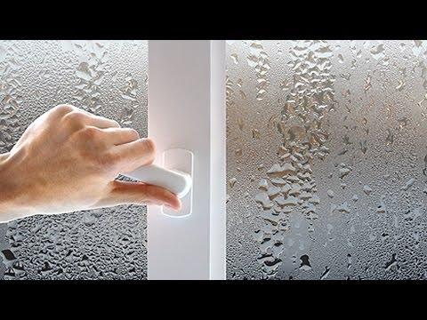 Почему запотевают пластиковые окна? GuberniaTV