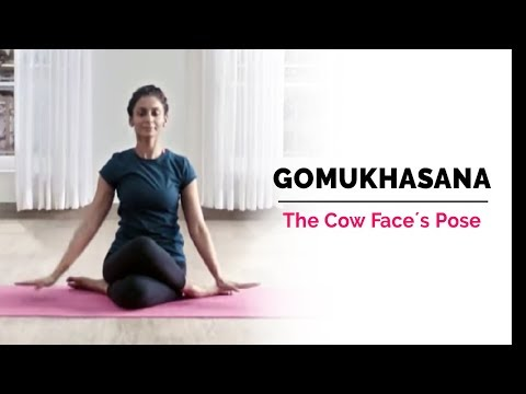 Gomukhasana | Cow Face Yoga Pose | Steps | Benefits | Yogic Fitness