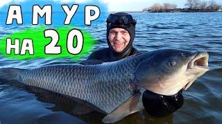 ПОДВОДНАЯ ОХОТА на АМУРОВ Огромные Рыбы попались на Днепре