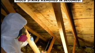Remove Mold Stains In 15 Seconds!