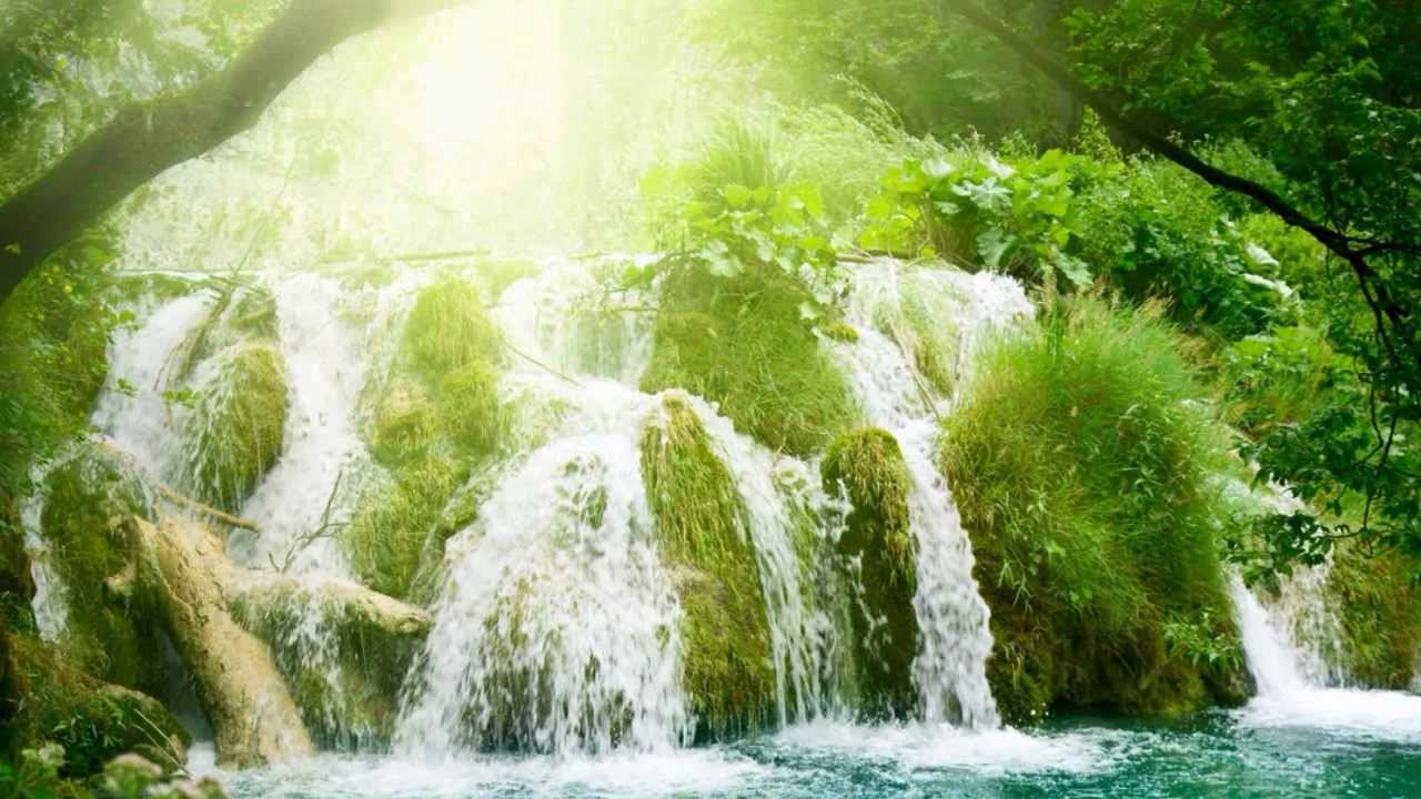 Free Wallpaper Fall Scenes Most Relaxing Music Ever Rain Forest Meditation Youtube