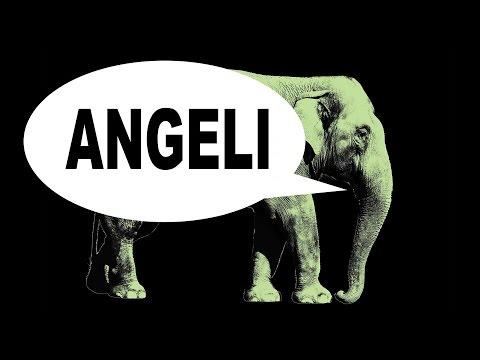 Sábados da Memória - Angeli - HQMIX TV