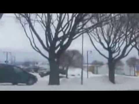 Moose Älg föll 8 meter Kupolen BORLÄNGE 2014