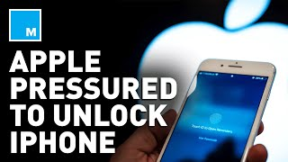Trump Pressures Apple To UNLOCK iPhone | Mashable News