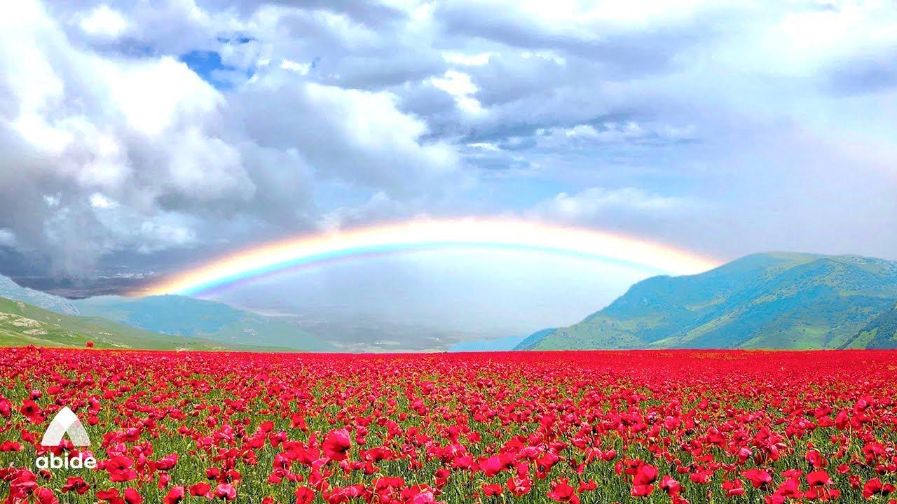 Psalms Peaceful Praise Abide Sleep Meditation Positive Mind Boost & Divine Affirmations Before Sleep
