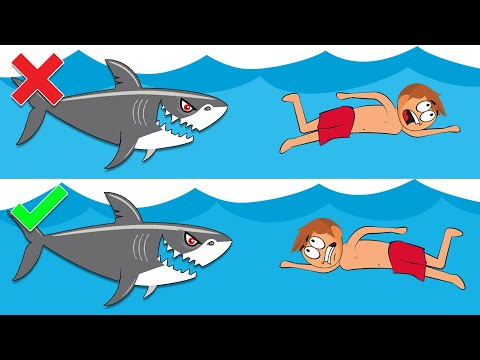 Shark Attack Survival Tips That Will Save Your Life