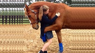 Adorable Moment Horses 🦄 Love Their Owners 💓