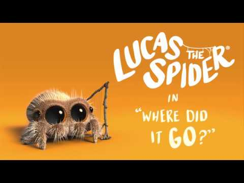 The Ace & TJ Show - Lucas the Spider is BACK and ADORABLE!