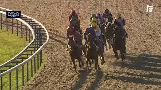 Vidéo de la course PMU PRIX ARCANGUES