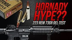 Hornady Hype? .223 Rem Hornady 73gr Critical Defense Gel Test