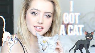 ADOPTING A CAT!!!