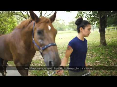 Singapore Jobs: Working with Horses (Documentary)