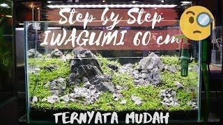 Cara mudah membuat aquascape Iwagumi bersama The Aquatic Freak, dengan step by step