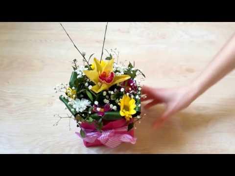 Как часто поливать цветы в губке