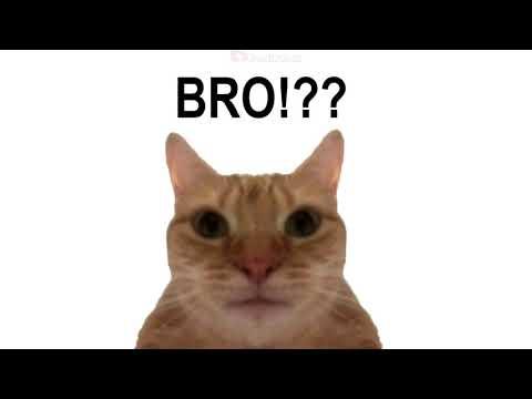 esquizo el origen | (Animation) video meme