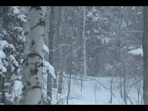 Stopping By Woods On A Snowy Evening By Robert Frost Youtube