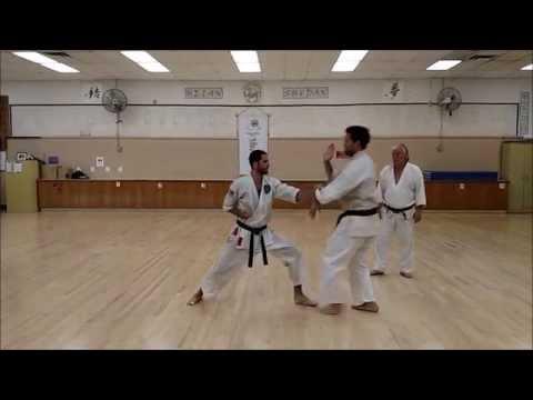 Jiyu Kumite Drill 1