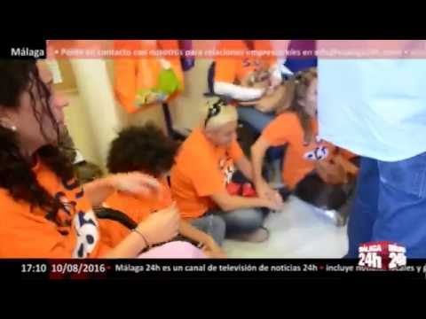 Málaga 24h TV - La polémica de ILUNION se extiende por toda Andalucía