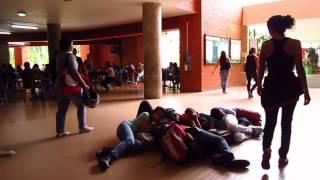 Performance Universidad Católica de Pereira