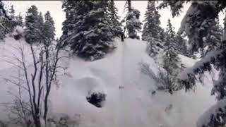 Горнолыжка в лесу