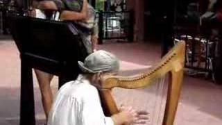 Harp Guy Boulder Colorado