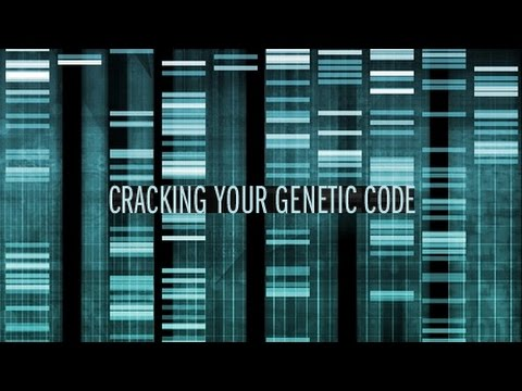 Nova - Cracking Your Genetic Code (PBS Documentary)