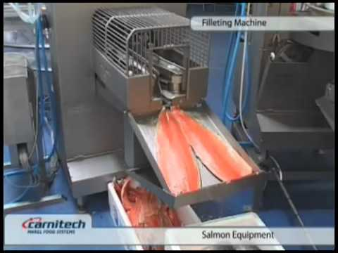 3 rapid funnydog tv for Fish fillet machine