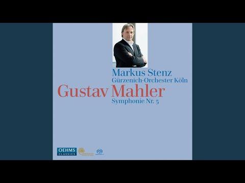 Symphony No. 5: II. Sturmisch Bewegt, Mit Grosster Vehemenz