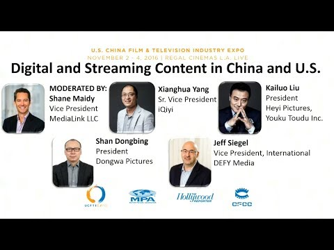Digital and Streaming Content in China and the U S Panel