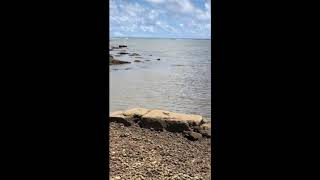Lets learn the Chamorro Language of Guam (Bear Rock Agfayan Bay Inarajan Guam)