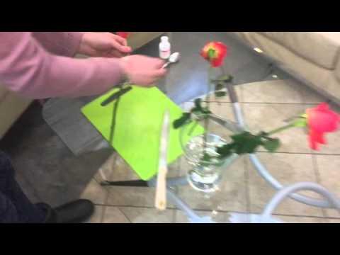 как реанимировать розы в вазе эмалью черные