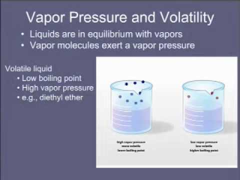 6  Vapor Pressure And Volatility