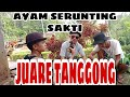 Film Comedy Empat Lawang Juare Tanggong  Mp3 - Mp4 Download